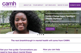 screenshot ofCamh Foundation